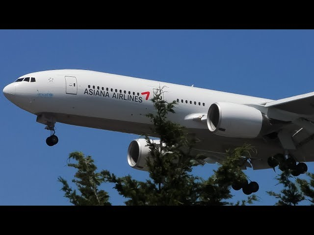 7 EXTREMELY CLOSE Landings   SeaTac Seattle Airport Plane Spotting
