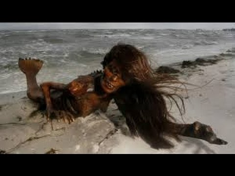 real mermaid caught alive - YouTube