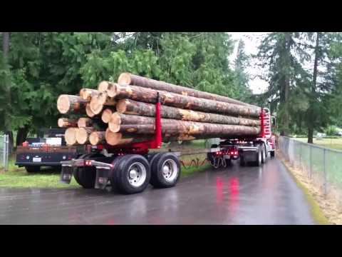 Export Timber headed to Northwest Mill. Logging and Log Hauling.
