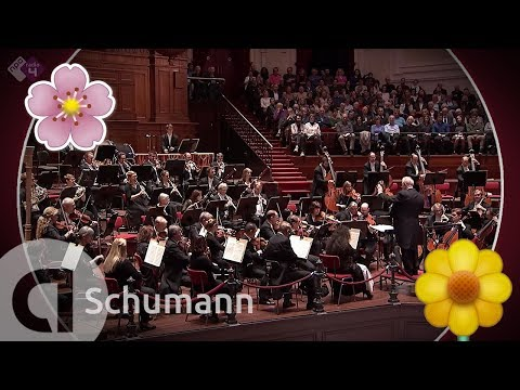 Schumann: Symphony No. 1; The Spring Symphony - Philharmonie Südwestfalen - Live Classical Music HD