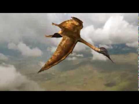 Quetzalcoatlus / Hatzegopteryx