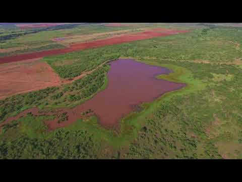 1,031 Acres Archer County Texas Ranch for Sale