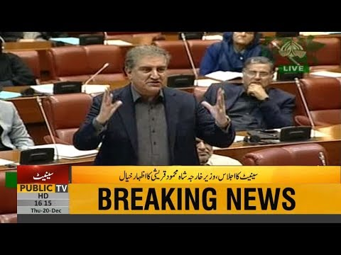 Foreign Minister Shah Mahmood Qureshi Speech in Senate | 20 December 2018