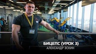 Бицепс (Урок 3). Александр Эскин (eng subtitles)