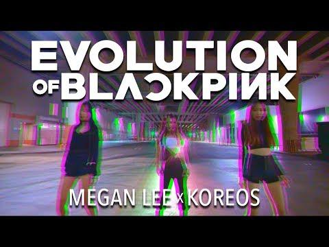 Evolution of BLACKPINK by Megan Lee (BlackPink Mashup)