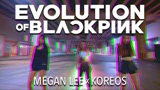 Video Evolution of BLACKPINK by Megan Lee (BlackPink Mashup) download MP3, 3GP, MP4, WEBM, AVI, FLV Desember 2017