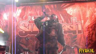 Luciano   Silver And Gold Live at Rototom
