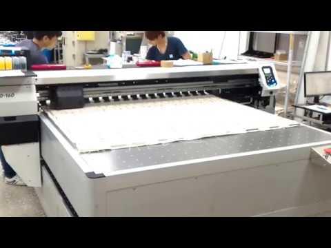 2016年,大尺寸棉布噴印機 實印狀況