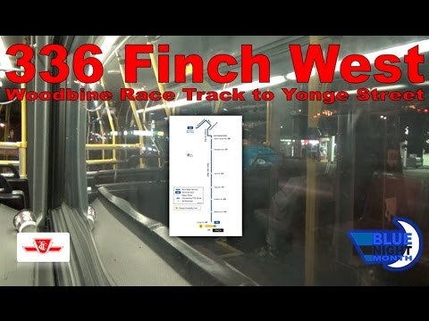 336 Finch West - TTC 2009 Orion VII NG HEV 1762 (Woodbine Race Track to Yonge Street)