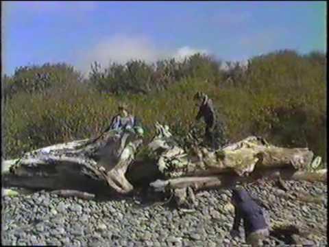 1986 Kalaloch and Ruby Beach