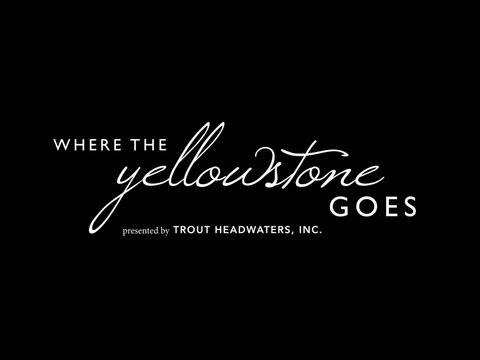 Where the Yellowstone Goes - Film Teaser (Fishing)