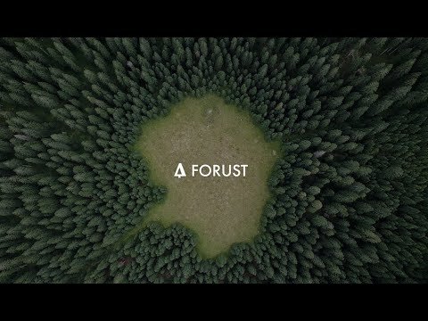 Forust: Building a greener future through 3D printed wood