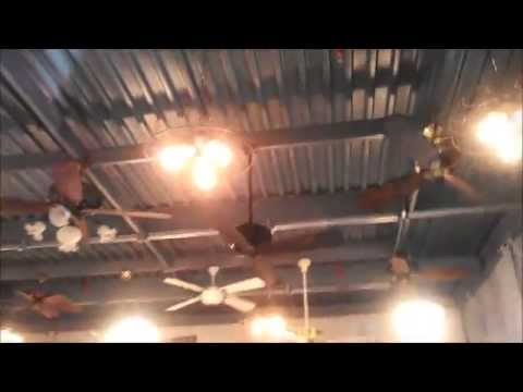 Video Tour of the Fanimation Ceiling Fan Co (FULL TOUR INCLUDING FAN MUSEUM IN HD)