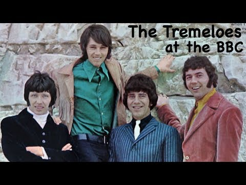 Tremeloes a selection from bbc sessions 1968 69