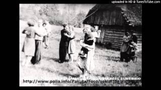 Jungėnų kapela Gegužio žiedai - Sok, Sok, Patrepsek