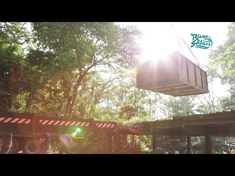 River Safari: Moving Manatees