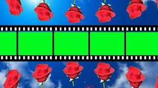 New Wedding photo frame green screen vfx hd video