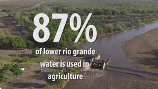 Lower Rio Grande Sees Highest Projected Water Allotment In 7 Years- But Challenges Remain