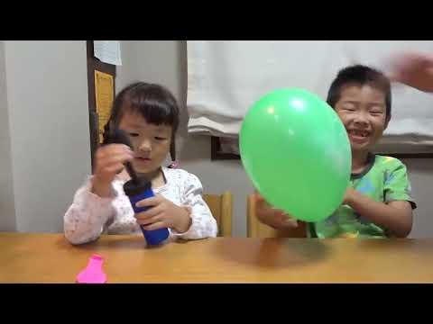 こびとづかん ふうせんセット KOBITO-DUKAN Balloons