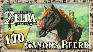 THE LEGEND OF ZELDA BREATH OF THE WILD Part 170: Zielschussübungen mit Ganons Pferd