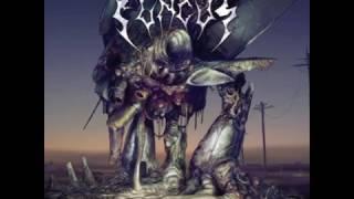 Fungus - Predatory Harvest (ALBUM STREAM)