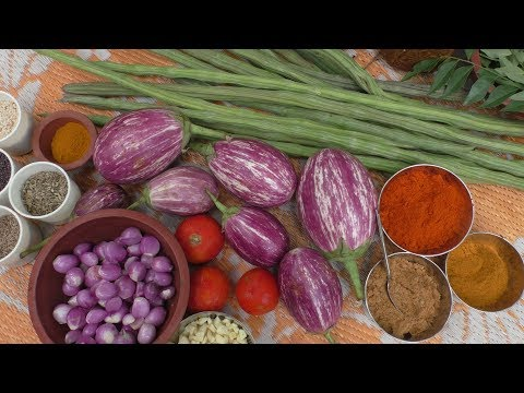 village Cooking Kathirikai Drumstick Gravy/ Cooking By Village food Recipes