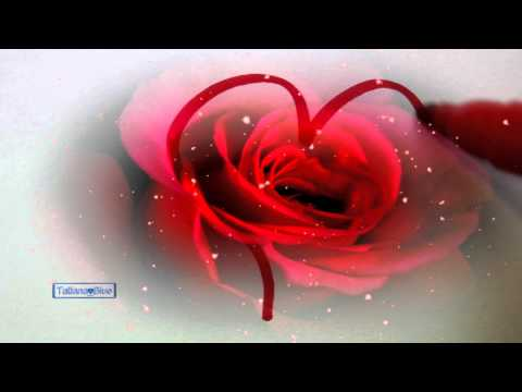 Happy Valentine's Day! - Martina McBride & Jim Brickman (Valentine)