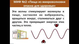 Дмитрий Веремеенко   Разоблачение мифов о питании и ЗОЖ via torchbrowser com