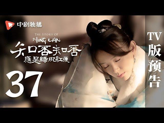 知否知否应是绿肥红瘦-第37集-tv版预告-赵丽颖-冯绍峰-朱一龙-领衔主演