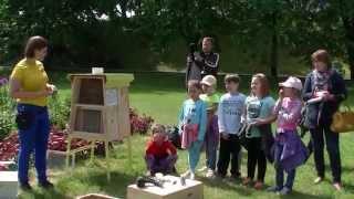 OLSZTYN24: Otwarcie hotelu dla pszczół i owadów zapylających