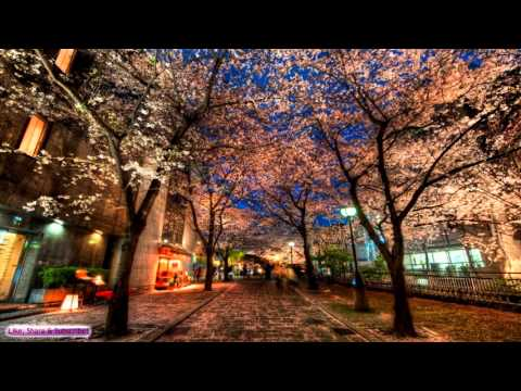 Relaxing Jazz Music | The Streets of Kyoto | Sleep, Relax, Study, Ambience