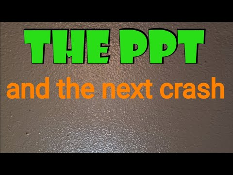 The PPTand the next market crash