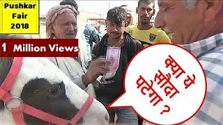 पुष्कर मेले में सस्ते घोड़े का मोलभाव ऐसे होता है Horse Deal Bargain In Pushkar Horse Market