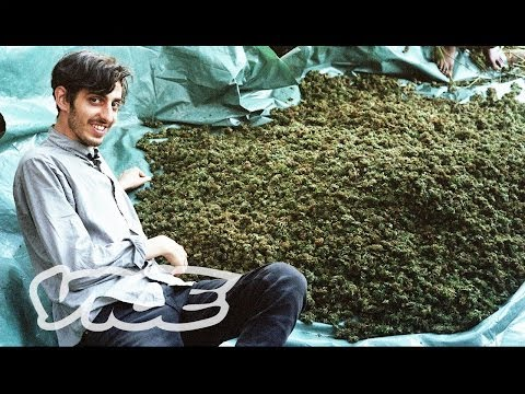 Swaziland: Gold Mine of Marijuana (Part 1/2)