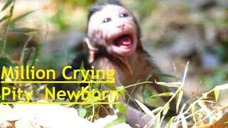 Million Crying|Pity Valentin Newborn Baby Cry&Cry Strange Sounds mom Denied Milk &Leave Baby Alone
