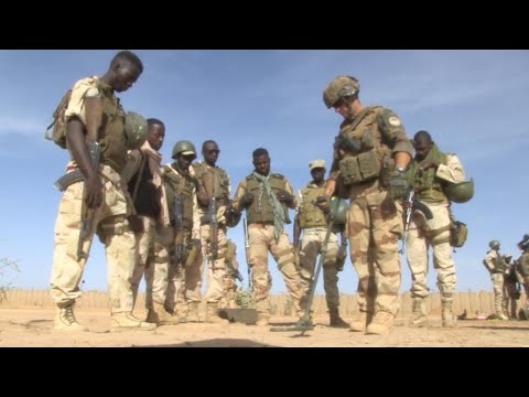 Operation Barkhane: Malian, French troops work together to push jihadists out