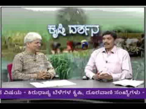 17 06 2015 live phone in programme on cultivation of minor millets dr b h nagappa and dr p s srikant