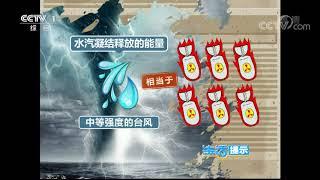 《生活提示》 20190817 台风能被人类干预吗?| CCTV