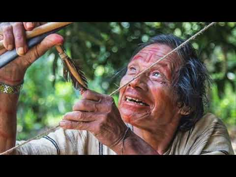 Peruvian Bow and Arrow Set: Cultural Traditions Endangered