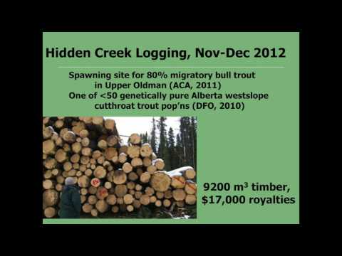Carolyn Campbell - Alberta's Forests: Biodiversity and Forestry