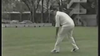クリケットの世界ーフィルディング