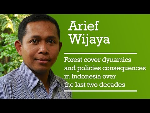 Forest cover dynamics and policies consequences in Indonesia over the last two decades