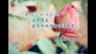 雜阿含0023經-我見(2版)8-5.當你看花 花跟你兩個都清清楚楚[德藏比丘]