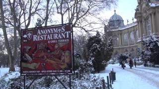ハンガリー 東欧旅行 Vajdahunyad Castle ヴァイダフニャド城 中欧旅行 Heroes' Square フォアグラを食べる ハンガリー ブダペスト 文化 風俗 観光 格安航空券