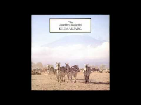 The Teardrop Explodes - Second Head