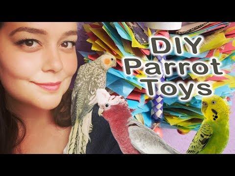 DIY Parrot Toys
