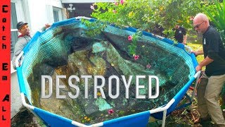 DESTROYED my FISH POOL POND!