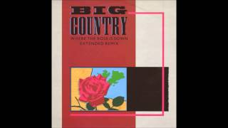 Big Country Where the Rose is Sown (Extended Remix)