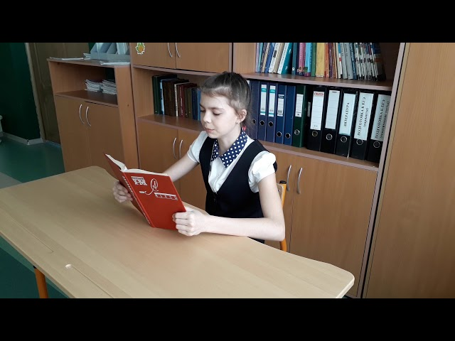 Изображение предпросмотра прочтения – НадеждаСветова читает произведение «Крохотки: Утенок» А.И.Солженицына