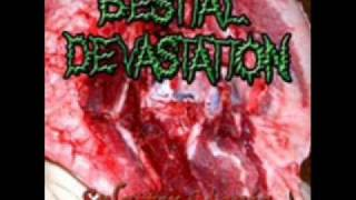 Bestial Devastation - The Sublime Art Of Devastation
